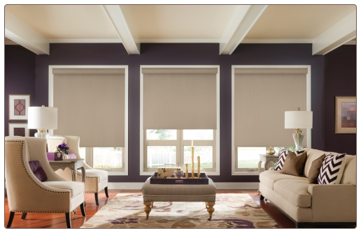 Graber Roller Shades Living Room Scene